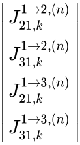{\displaystyle \left {\begin{matrix}J_{21,k}^{1\to 2,(n)}\\J_{31,k}^{1\to 2,(n)}\\J_{21,k}^{1\to 3,(n)}\\J_{31,k}^{1\to 3,(n)}\\\end{matrix}}\right }